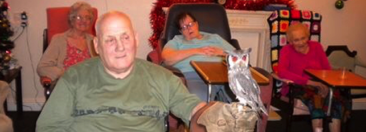 Falconry UK Care & Nursing Home Visits