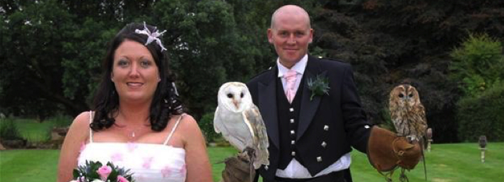 Falconry UK Wedding Visits