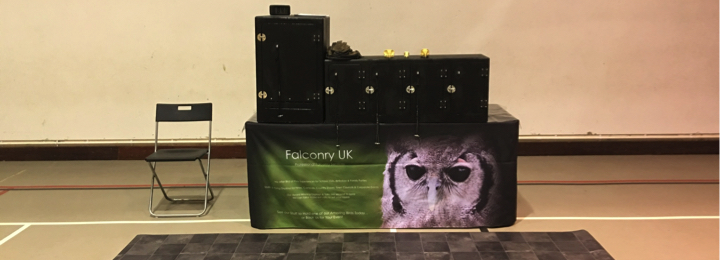 falconry uk school setup